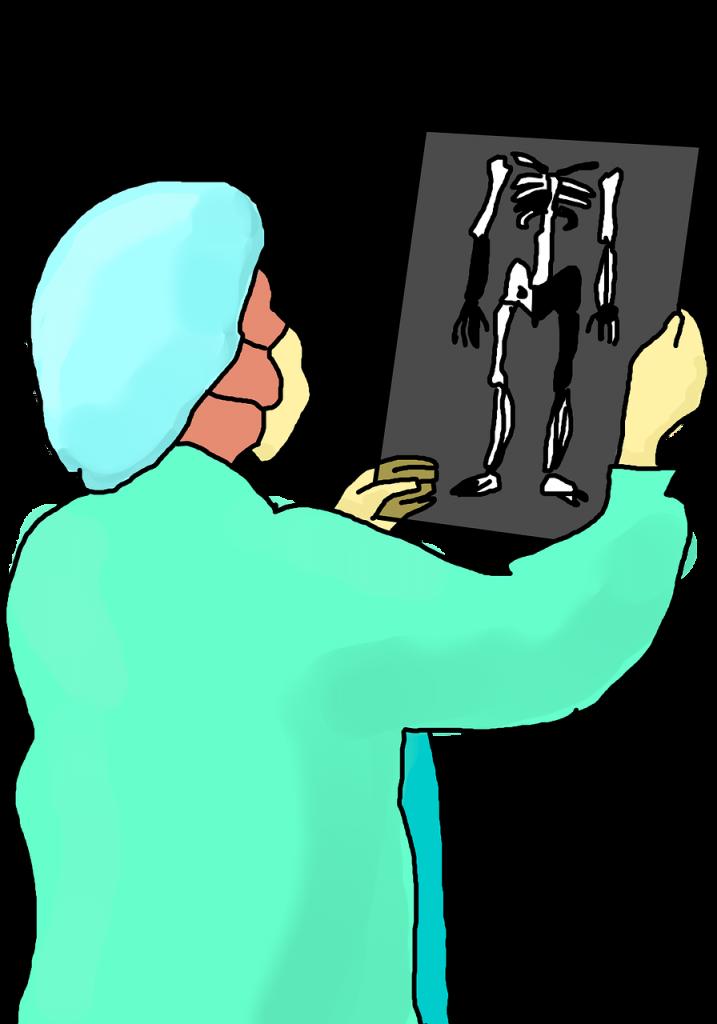 מומחה גב